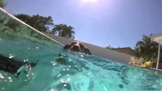 Pumpkin The Diving Dachshund - Gopro Underwater Footage