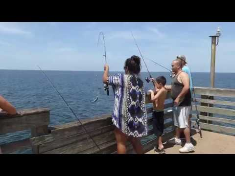 Fishing at the venice fishing pier florida 09 04 2017 for Florida fishing regulations 2017