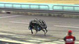 Darpa Robotics Challenge 2013: Boston Dynamic WildCat