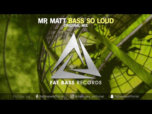 Mr Matt - Bass So Loud (Original Mix)