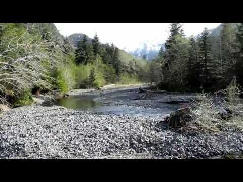 Cougar Expedition 2013 Part 1