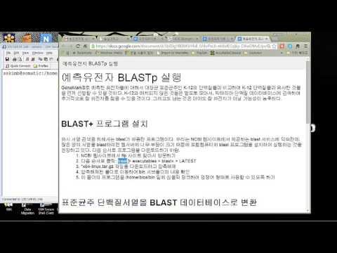 BLASTp installation 유전체학개론