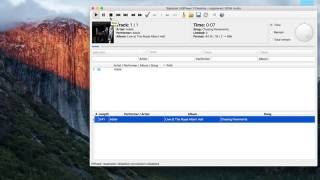 Hqplayer Network Audio Adapter By Sms-200
