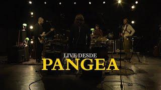 Los Mesoneros - Live Desde Pangea