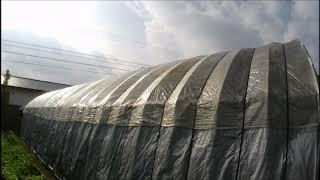 ハウス倉庫の雨漏りの補修をしました。シートは、こすれに弱いようです...