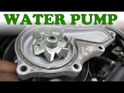 how-to-replace-a-honda-water-pump