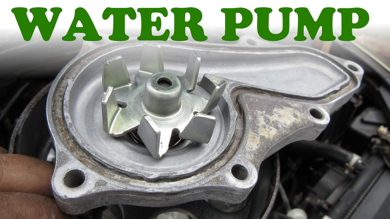 how to replace a honda water pump