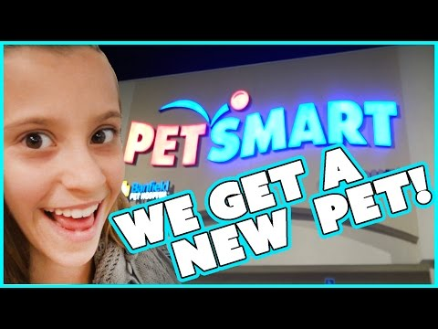 WE GET A NEW PET  🐶!!! | SMELLY BELLY TV | FAMILY VLOG