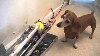 Spacy.Tv - Интерактивная игрушка для собаке