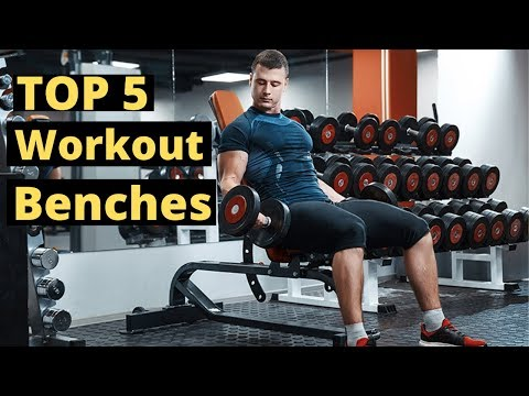 5 Best Workout Benches 2020