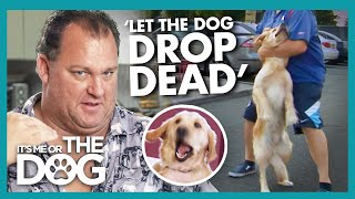 Can Victoria Help Owner who HATES their Dog to Accept them? | It's Me or The Dog
