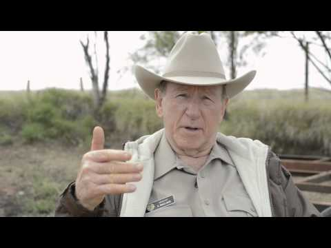 Mystery Road's Tony Barry: The Story of The Sarge