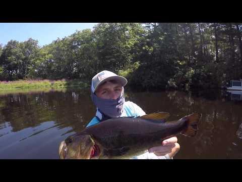 NEBASSIN - Charles River Tournament (Pre-Fish)