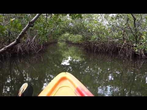Kayaking the Woolverton Trail (Florida, USA)