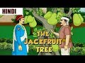 Akbar Birbal Moral Stories | The Jackfruit Tree | Animated Hindi Stories | Sunflower Kidz