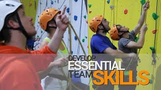 Why rock climbing makes an incredible choice for Corporate teambuilding!