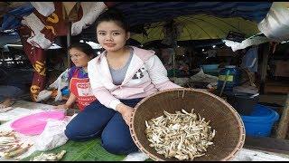Laos market : fish and mushroom , Laos food 2018