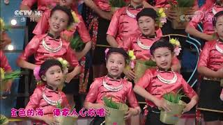 《七巧板》 20190813 优秀少儿歌舞精选|CCTV少儿