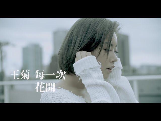 [avex官方HD] 王菊 -《每一次花開》官方完整版MV