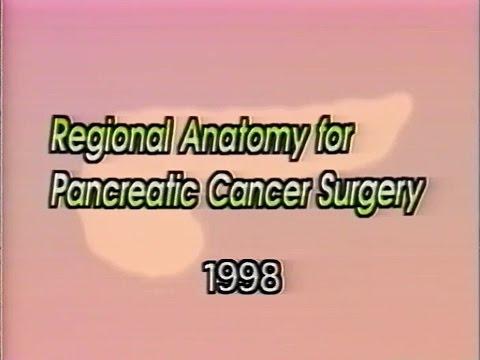 Regional Anatomy For Pancreatic Cancer Surgery Youtube