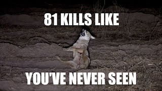 81 NIGHT CREW KILLS. Trust me.......you have time