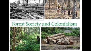 Forest Society and Colonialism class 9 history chapter 4// 2019