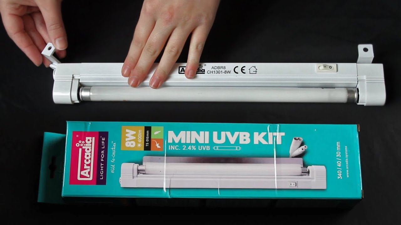Mini Uvb Kit By Arcadia Unboxing