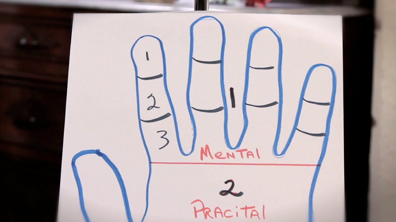 How to Read a Finger's 3 Sections | Palm Reading
