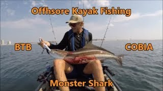 MONSTER Tiger Shark and HUGE Cobia in the Kayak!