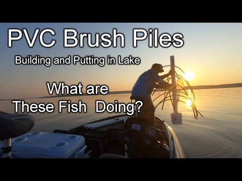 WHAT ARE THE FISH DOING????  Making Brush Piles (Dropping Them In And Viewing With Livescope)