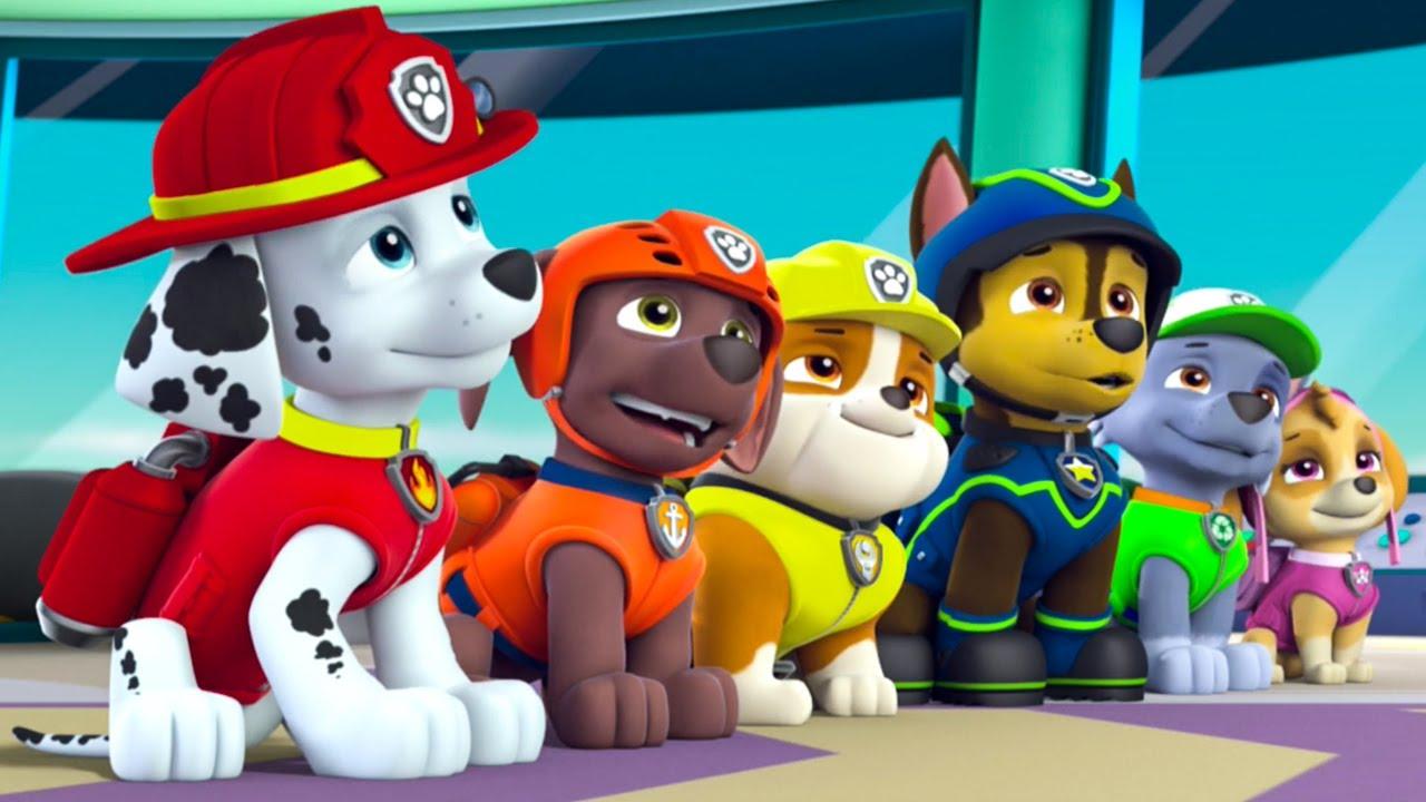 paw patrol alphabet learning nickelodeon  full episodes