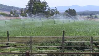 Tableland farms looking to invest in environmental outcomes