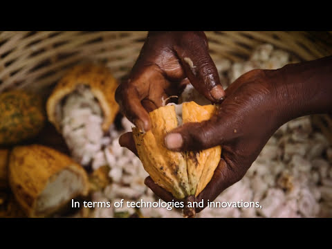 USAID MARKETS II: Transforming Agriculture in Nigeria