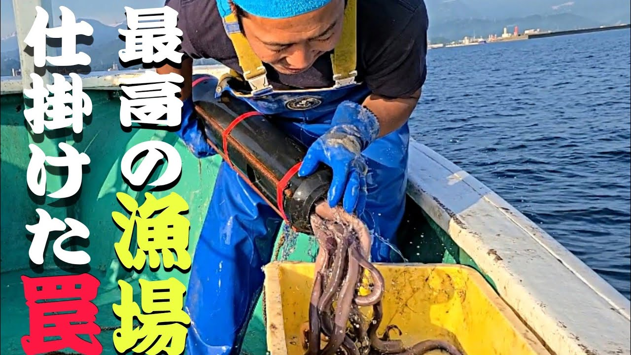 うなぎ筒|アナゴ筒|糸魚川名物|ヌタウナギ|漁師|Hagfish|곰장어