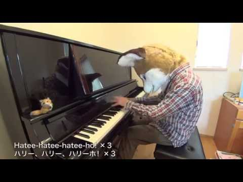 Ylvis - The fox (what does the fox say ) / fursuit piano performance
