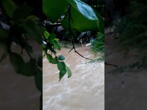 Video de Jatibonico