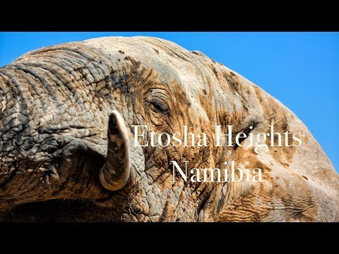 Luxury Lodges of Africa. Etosha Heights Private Reserve - Namibia 4K UHD