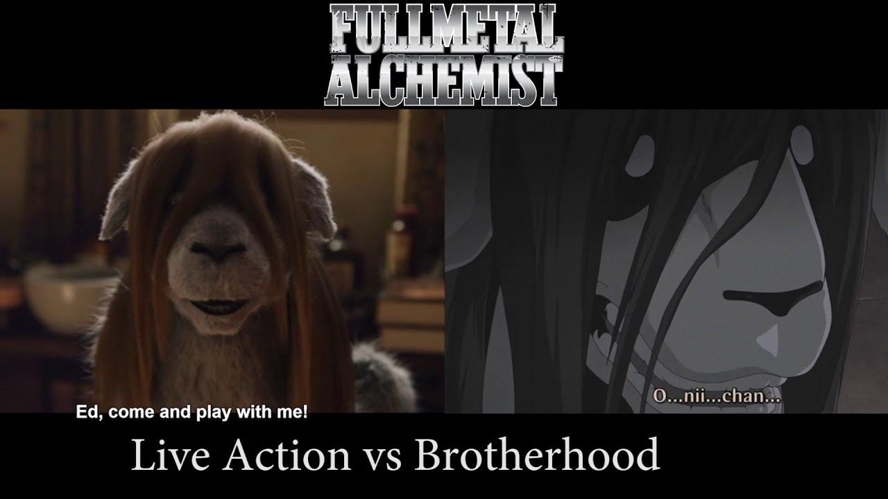 fullmetal alchemist dog girl