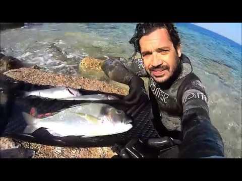 20 ΜΕΡΕΣ ΜΕΤΑ ... Spearfishing By Leon