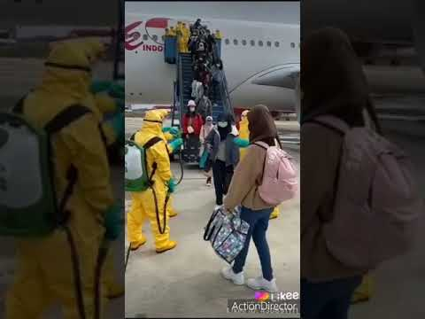Super Vidéo Pour Sanda Boro Covid 19
