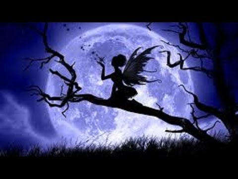 DISAPPEARING FAIRIES - Real Fairy Homes caught on tape ...  DISAPPEARING FA...