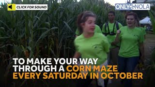 Lose Yourself At This Corn Maze In Baton Rouge