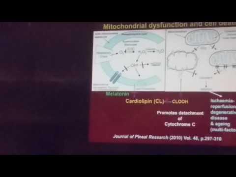 Melatonin in  health, disease effects of fluoride