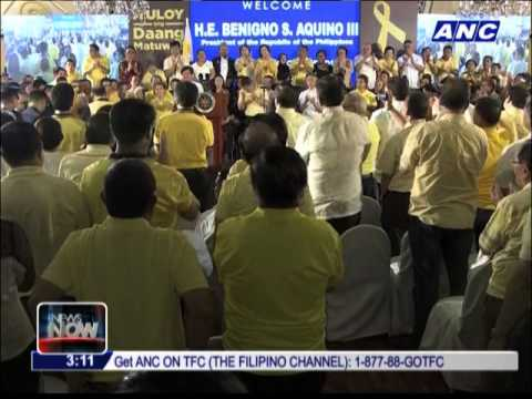 Villar: NP undecided on whom to endorse in 2016