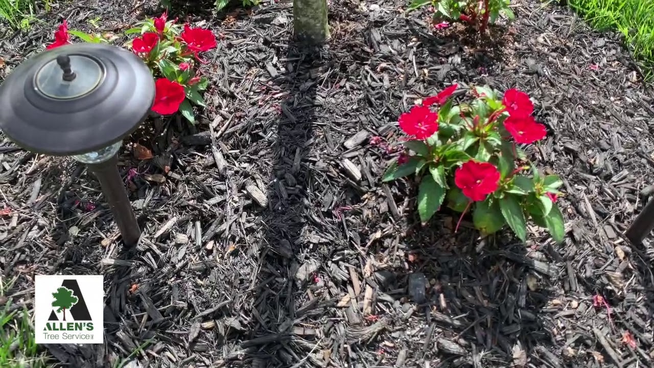 Allen's Tree Service - Lawn Care Tips planting flowers- Call 636-532-5535