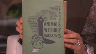 Looky Looky at This Booky: Animals Without Backbones