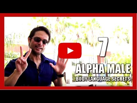 Secrets of the Alpha Male John Kreiter