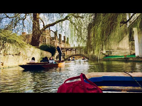 CAMBRIDGE, England | Punting, Colleges, Walkabout, History | March 2019