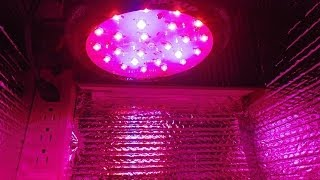 Led Stealth Speaker Grow Box