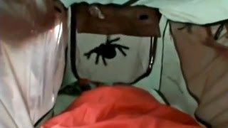 'SPIDER IN TENT PRANK' AUSTRALIA - GALL BOYS